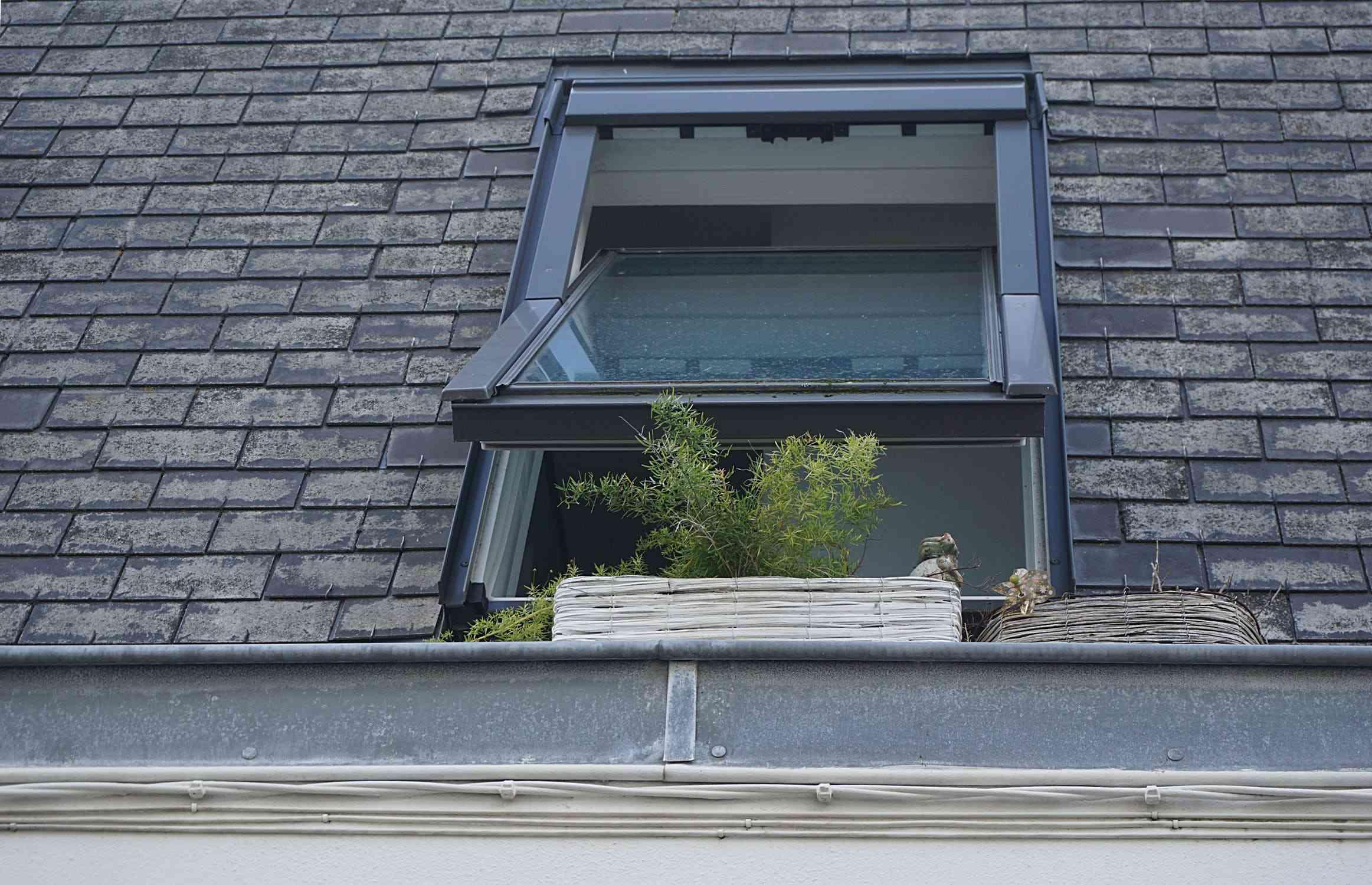 Papa zaczyna ustępować innym pokryciom dachowym
