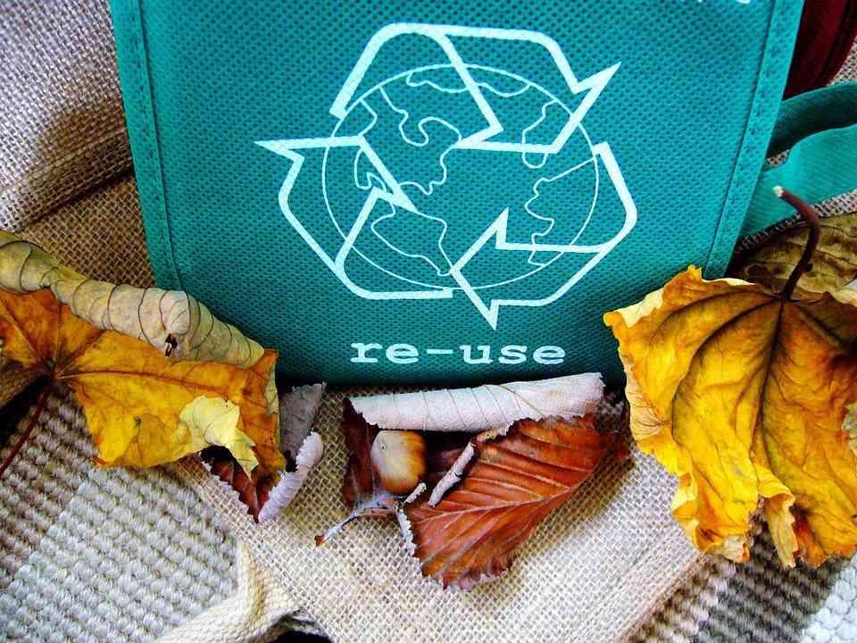Kolory pojemników na odpady