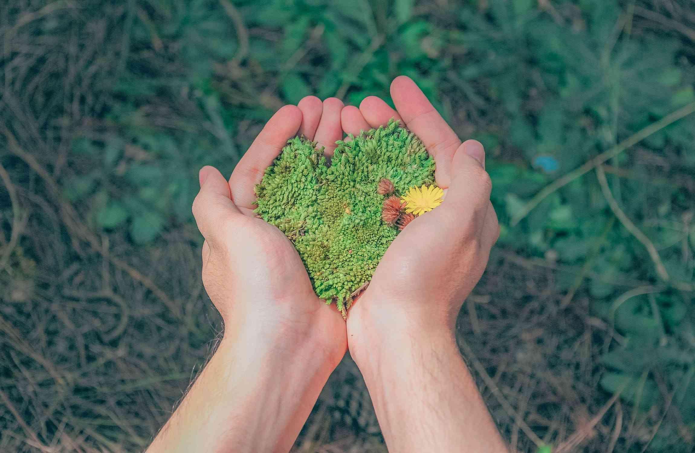 Używane kosze na odpady