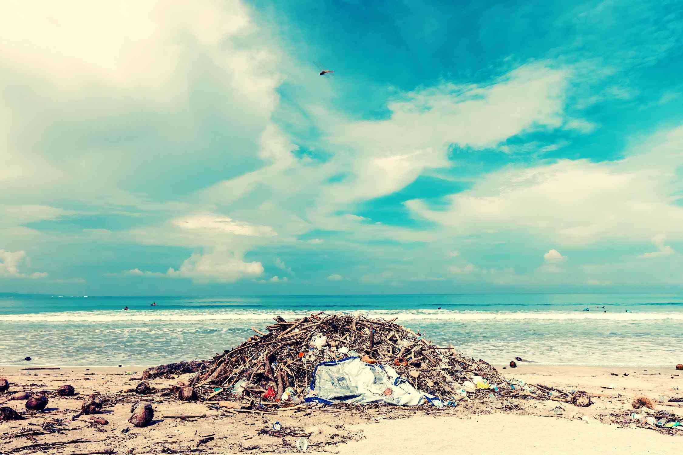 Gdzie wyrzucić dany rodzaj odpadu ?