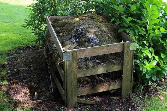 Czego nie wyrzucać do odpadów biodegradowalnych ?