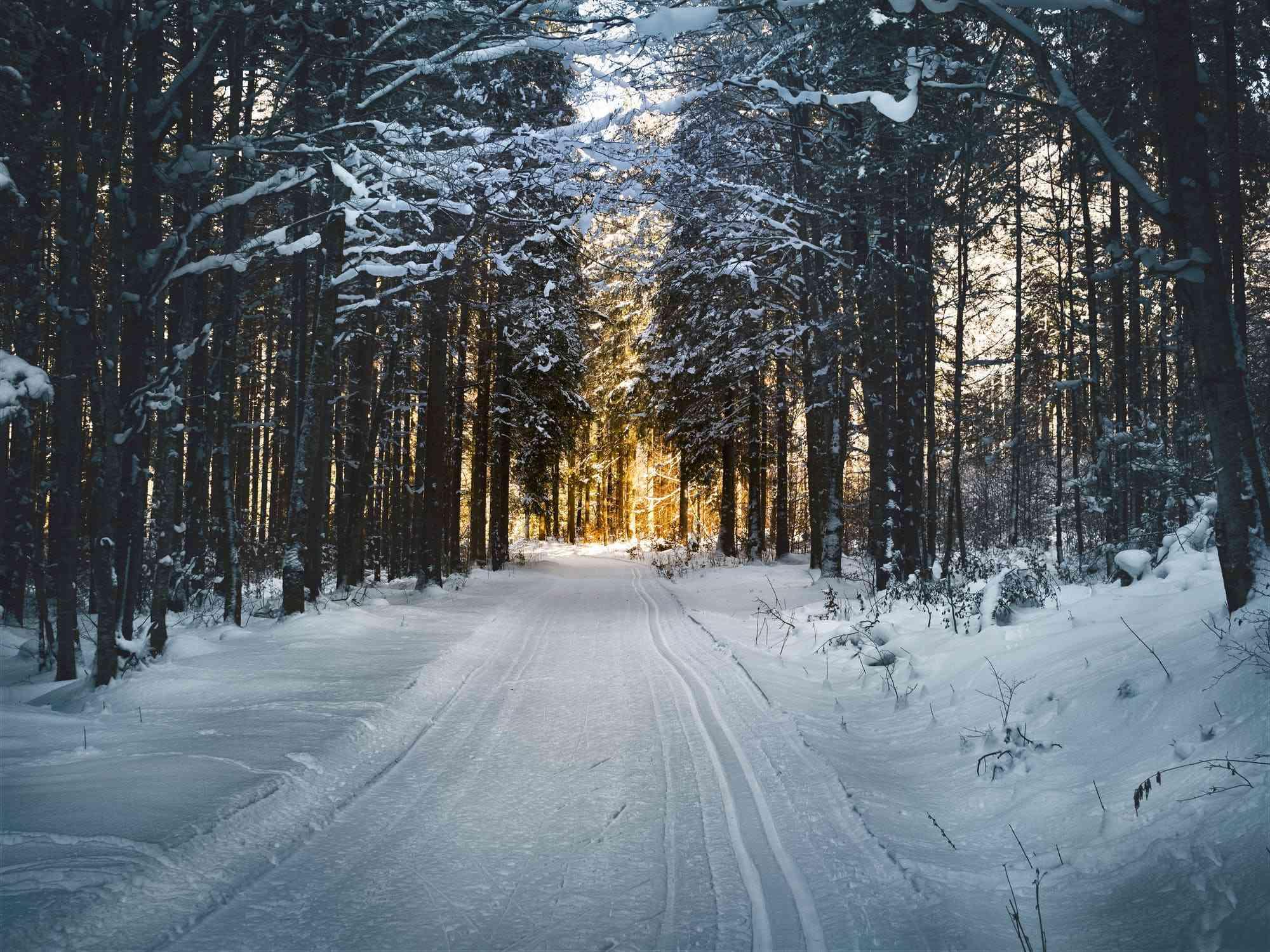 Gospodarowanie odpadami zimą