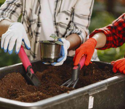 odpady biodegradowalne 400x350 - Co to są odpady biodegradowalne ?