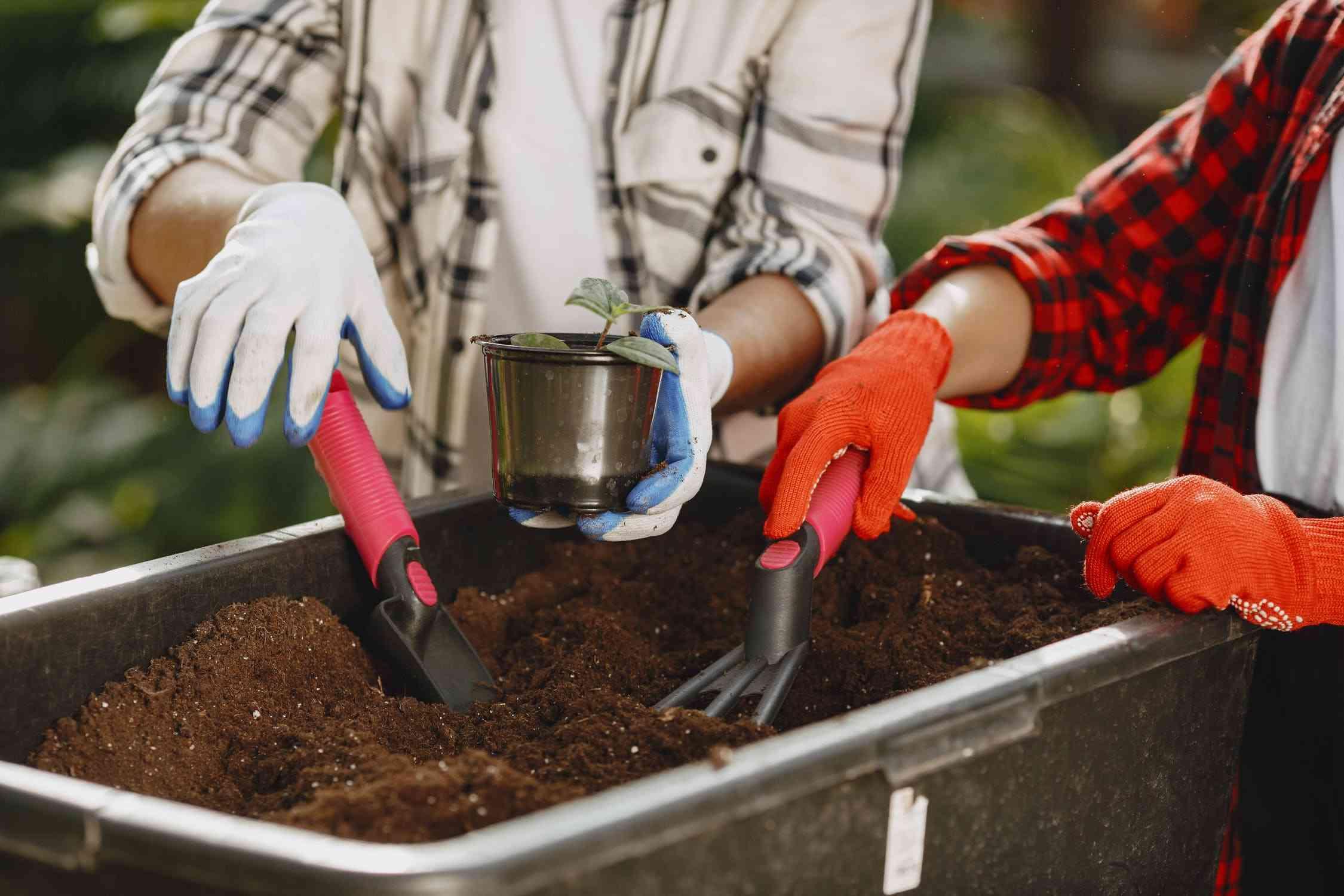 Co to są odpady biodegradowalne ?