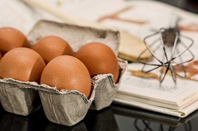 Gdzie wyrzucać skorupki po jajkach ?